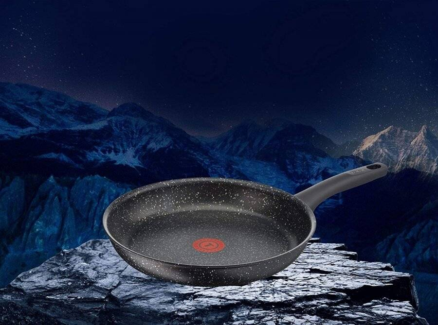 Tefal Everest Stone Frying Pan with Thermospot, Aluminium Effect-24 cm